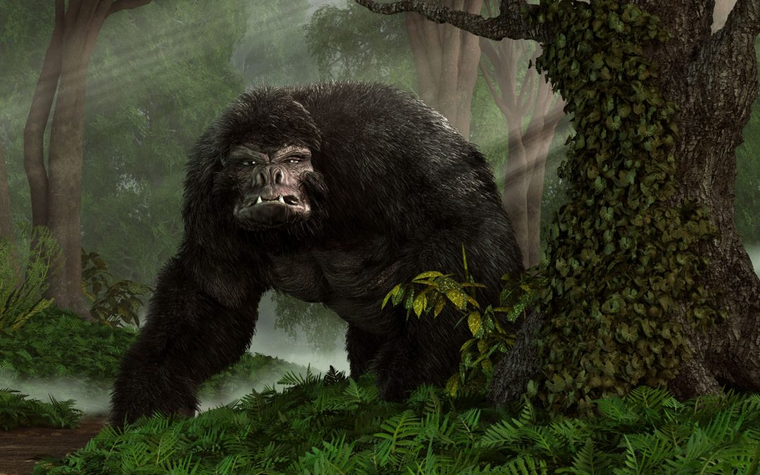 I was followed by a Bigfoot!